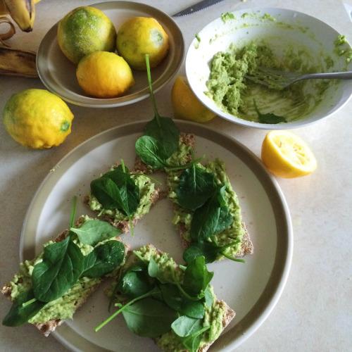 Avocado, Ryvita, Spinach